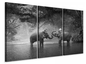 Ljuddämpande tavla - Two Elephants - SilentSwede