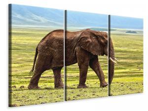 Ljuddämpande tavla - Gorgeous elephant - SilentSwede