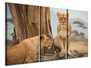 Ljuddämpande tavla - Lions in africa - SilentSwede