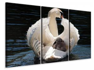 Ljuddämpande tavla - Mom and baby swan - SilentSwede