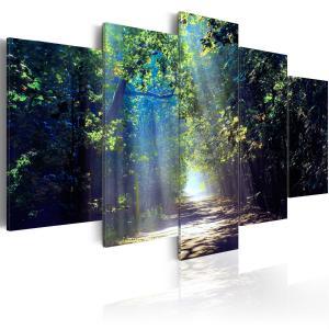 Ljuddämpande tavla - Sunny Forest Path - SilentSwede
