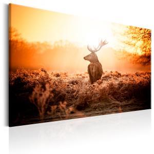 Ljuddämpande & ljudabsorberande tavla - Deer in the Sun - SilentSwede