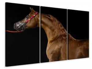 Ljuddämpande tavla - Proud horse - SilentSwede