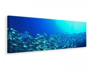 Ljuddämpande tavla - Shoal Of Fish - SilentSwede