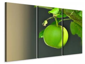 Ljuddämpande tavla - Green apple - SilentSwede