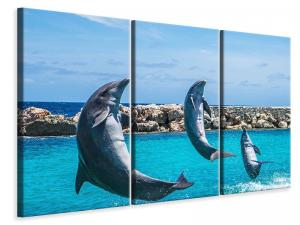 Ljuddämpande tavla - 3 dolphins - SilentSwede