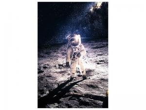 Ljudabsorberande tavla - The Astronaut - SilentSwede