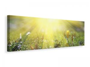 Ljuddämpande tavla - Flowery Meadow - SilentSwede