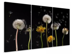 Ljuddämpande tavla - The phases of dandelion - SilentSwede