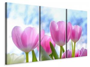 Ljuddämpande tavla - Tulips in nature - SilentSwede