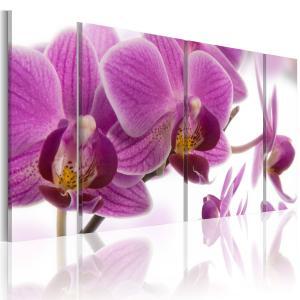Ljuddämpande tavla - Marvelous orchid - SilentSwede
