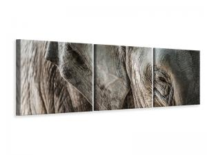 Ljuddämpande tavla - Close Up Elephant - SilentSwede