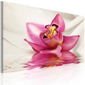 Ljuddämpande tavla - Unusual orchid - SilentSwede