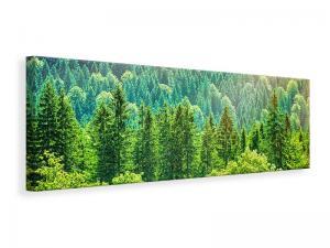 Ljuddämpande tavla - The Forest Hill - SilentSwede