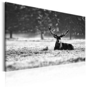 Ljuddämpande & ljudabsorberande tavla - Lying Deer - SilentSwede