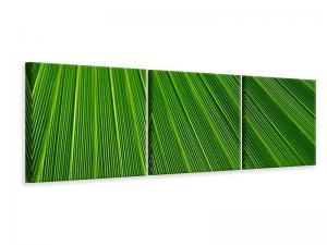 Ljuddämpande tavla - Palm stripe I - SilentSwede