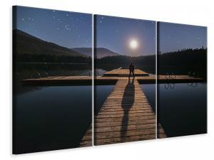 Ljuddämpande tavla - Alone at full moon - SilentSwede