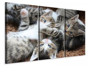 Ljuddämpande tavla - Many kittens - SilentSwede