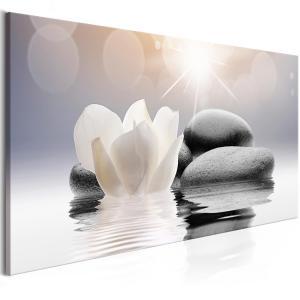 Ljuddämpande tavla - Natural Lightness - SilentSwede