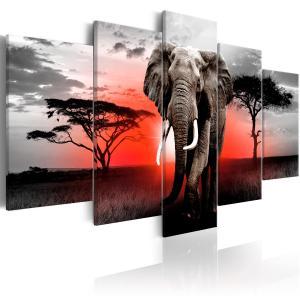 Ljuddämpande tavla - Lonely Elephant - SilentSwede