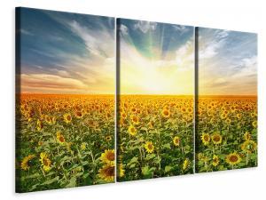 Ljuddämpande tavla - A Field Full Of Sunflowers - SilentSwede