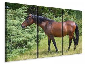 Ljuddämpande tavla - Strong horse - SilentSwede