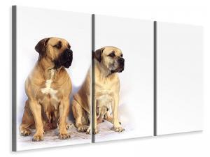 Ljuddämpande tavla - 2 mastiffs - SilentSwede