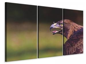 Ljuddämpande tavla - Watchful eagle - SilentSwede