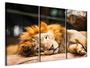 Ljuddämpande tavla - Relaxed Lion - SilentSwede
