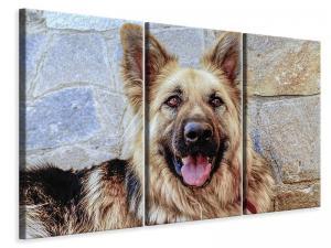 Ljuddämpande tavla - The german shepherd - SilentSwede