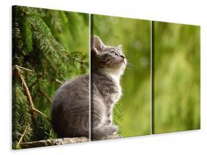 Ljuddämpande tavla - Wildcat - SilentSwede