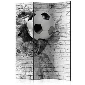 Rumsavdelare - Dynamic Football - SilentSwede