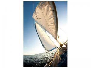 Ljudabsorberande tavla - Sailing - SilentSwede