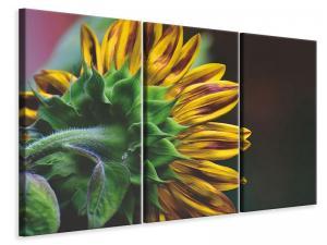 Ljuddämpande tavla - Sunflower close up - SilentSwede