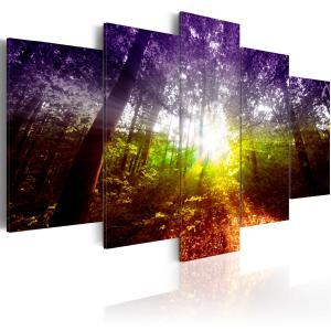Ljuddämpande tavla - Rainbow Forest - SilentSwede
