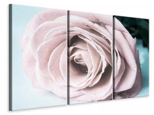 Ljuddämpande tavla - Pastel Rose - SilentSwede