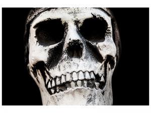 Ljudabsorberande tavla - Skull - SilentSwede
