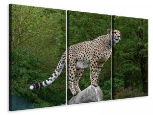 Ljuddämpande tavla - Cheetah on the go - SilentSwede