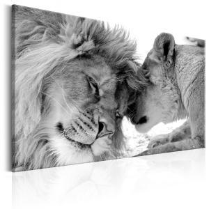 Ljuddämpande tavla - Lion's Love - SilentSwede