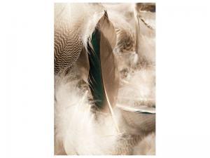 Ljudabsorberande tavla - Feathers - SilentSwede