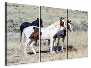 Ljuddämpande tavla - 3 wild horses - SilentSwede