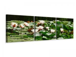 Ljuddämpande tavla - A field full of water lilies - SilentSwede