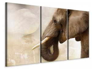 Ljuddämpande tavla - Portrait of an elephant - SilentSwede