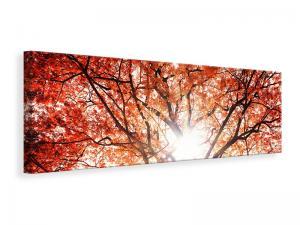 Ljuddämpande tavla - Light Of Autumn - SilentSwede