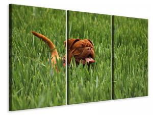 Ljuddämpande tavla - The mastiff in the grass - SilentSwede