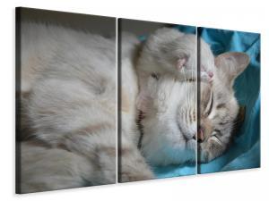 Ljuddämpande tavla - Cats mom with baby - SilentSwede