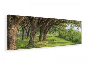 Ljuddämpande tavla - Mature Trees - SilentSwede