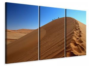 Ljuddämpande tavla - Desert hike in namibia - SilentSwede