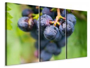 Ljuddämpande tavla - Grapes - SilentSwede