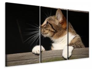 Ljuddämpande tavla - Xl cat - SilentSwede